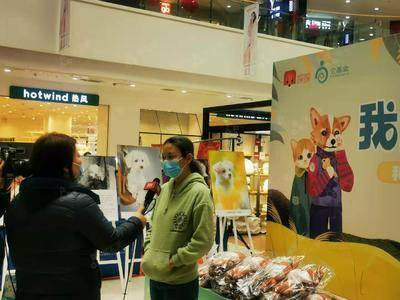 探探宠物领养活动-北京合生广场