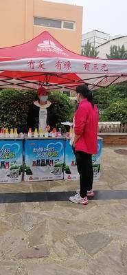 三元乳业社区推广-青岛海信金色慧谷