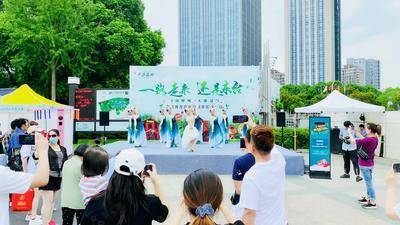 东台黄海森林推广活动-上海大宁郁金香公园
