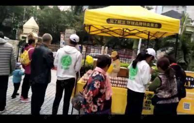 乐农社推广-深圳南山创世纪滨海花园