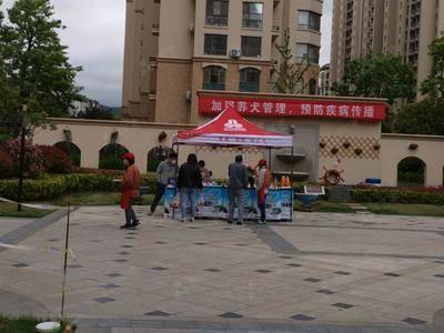 三元乳业社区推广-青岛采菊苑